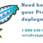 Deploy Squid proxy with caching and filtering for safe